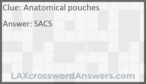 Anatomical pouches Answer
