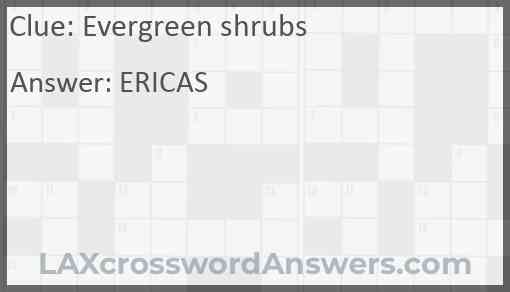 Evergreen shrubs Answer